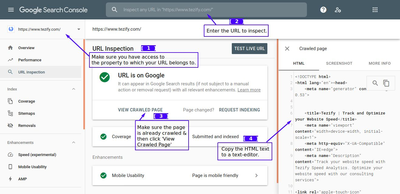 Viewing Google's crawled copy of your page (from Google Search Console)
